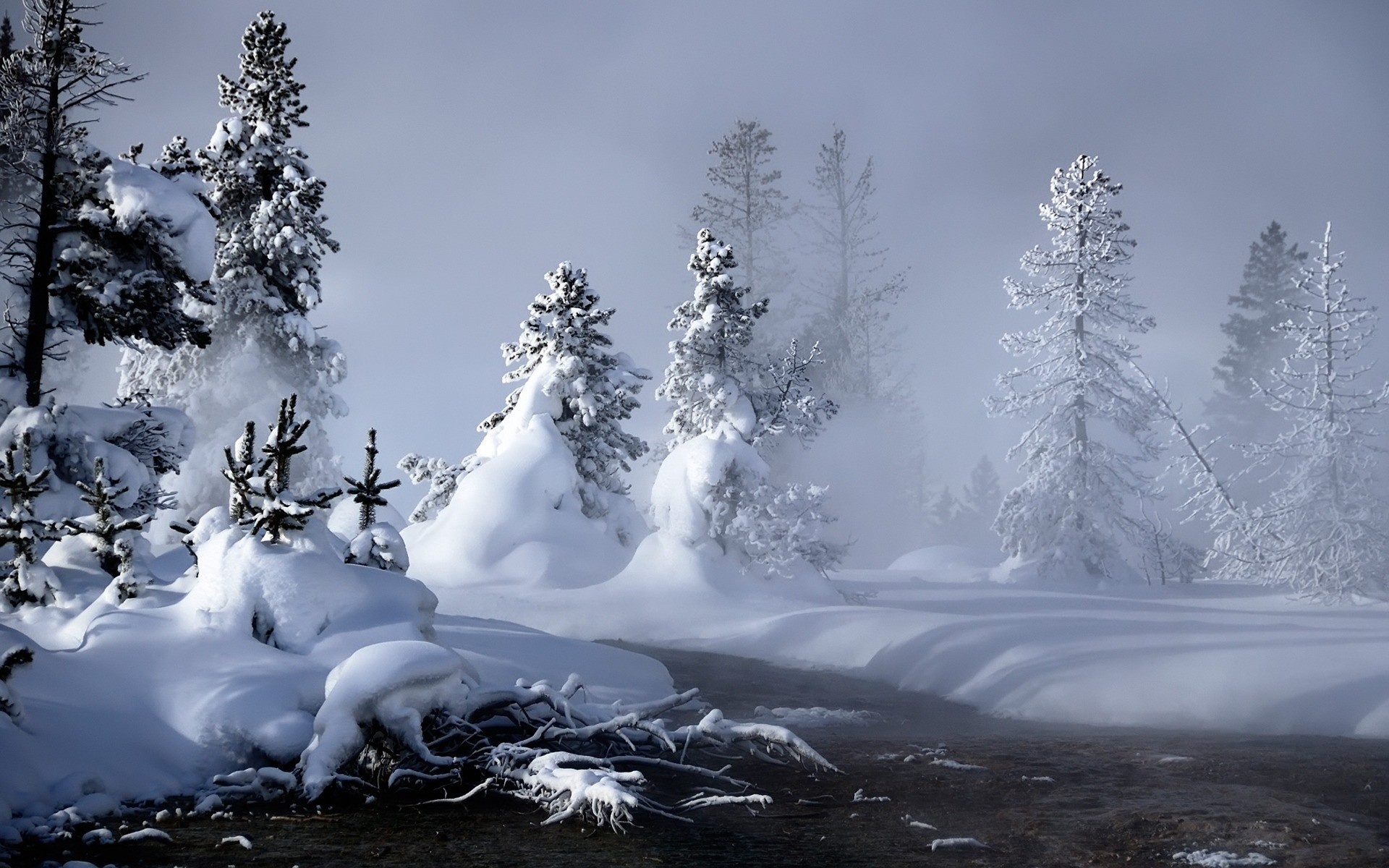 10 winter landscapes Cute wallpapers 1920x1200