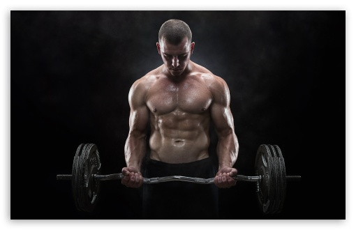 Bodybuilding Motivation HD wallpaper for Standard 43 54 Fullscreen 510x330