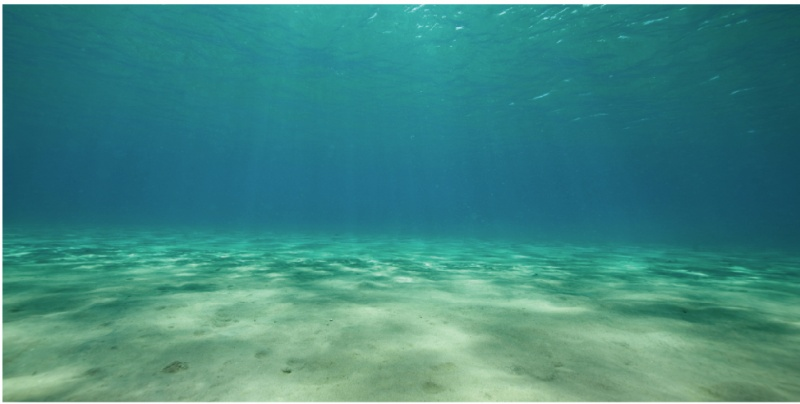 Aquarium Decor Aquarium Backgrounds Ocean Floor Cling Background .