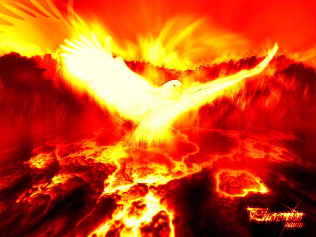 Download wallpaper Phoenix returns 1024x768