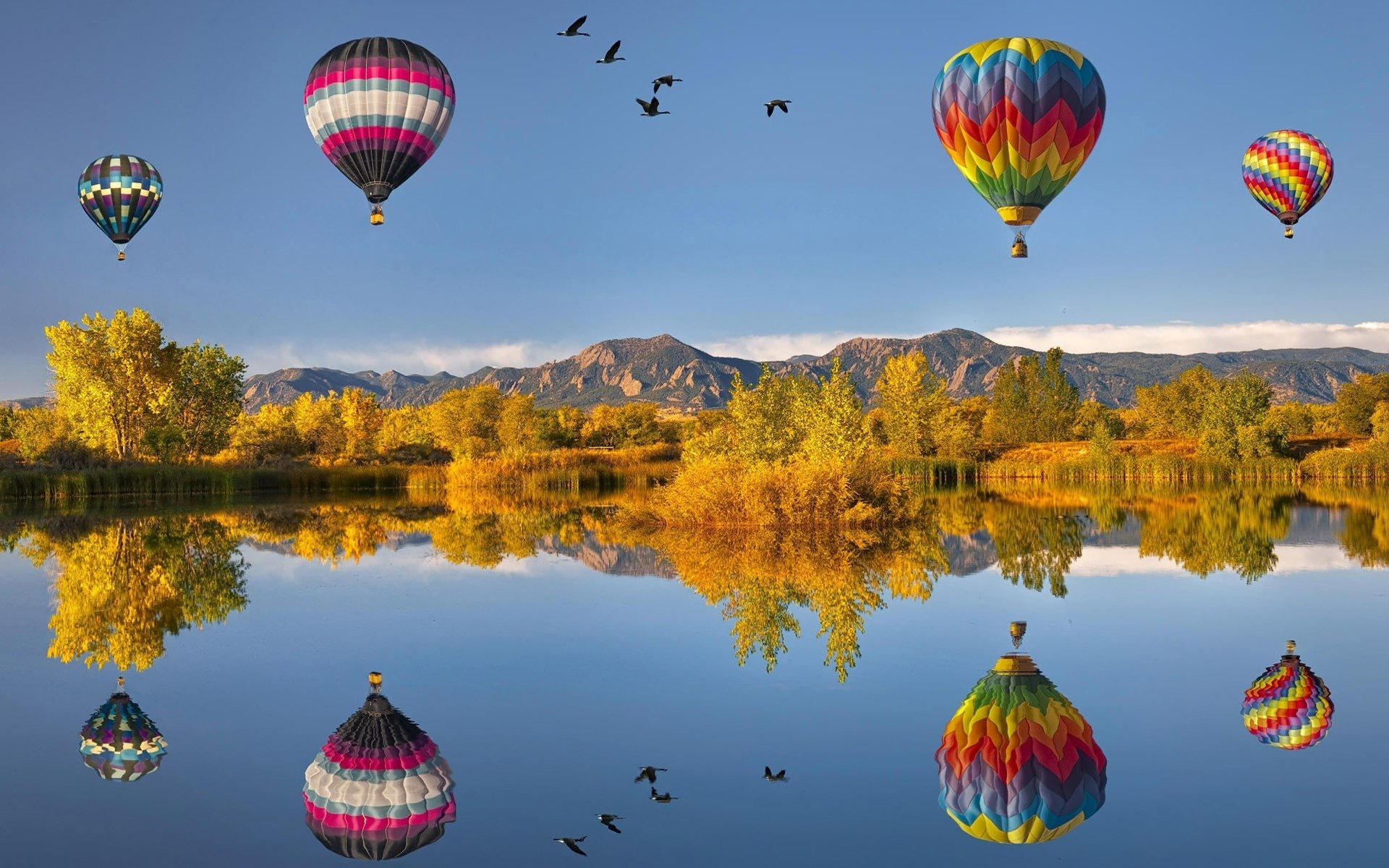 HD Hot Air Balloon Wallpapers and Photos HD Photography Wallpapers 1920x1200