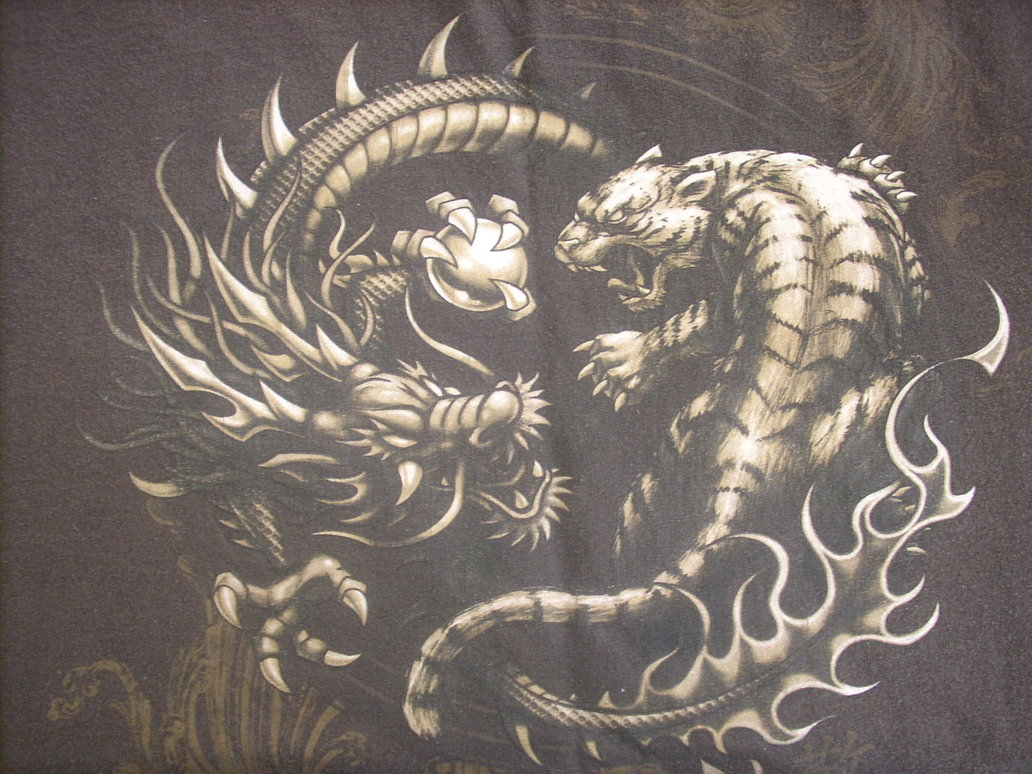 Displaying 19 Images For   Tiger Vs Dragon 1032x774
