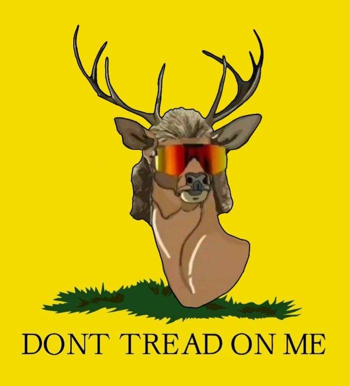 Pin on Deer Mullet ARMY 702x775