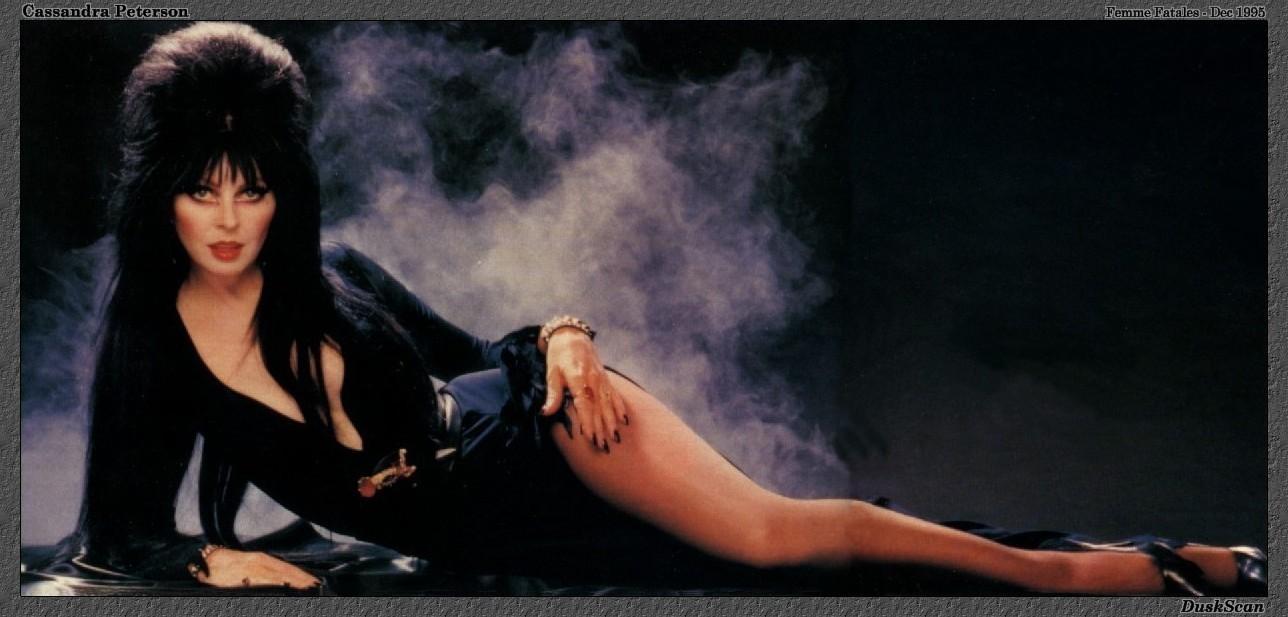 Free Download Elvira Elvira Photo 16711819 1288x617 For Your