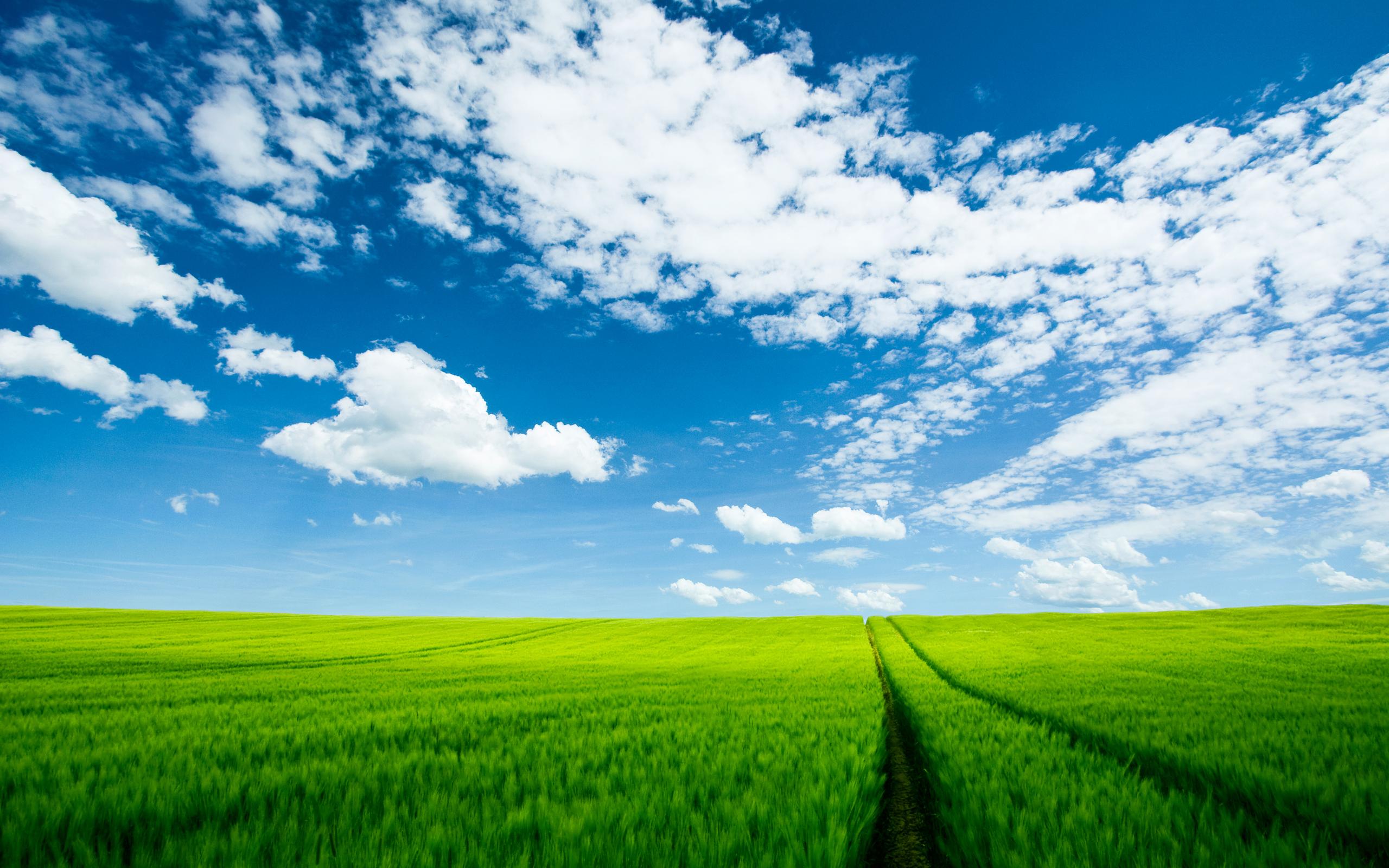 Summer Landscape Wallpapers HD Wallpapers 2560x1600
