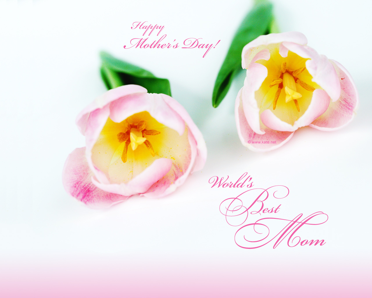 going to make a happy Mothers day PPT you can use these Mothers Day 1280x1024