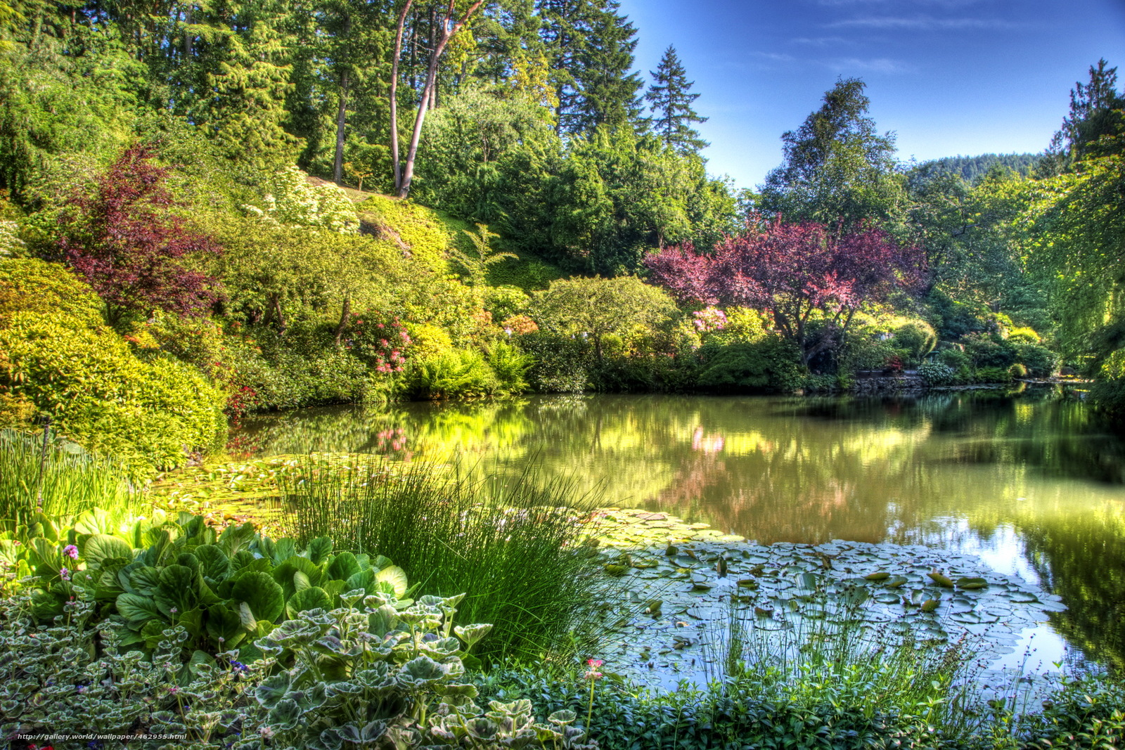Download wallpaper Garden butchart gardens victoria Canada 1600x1067