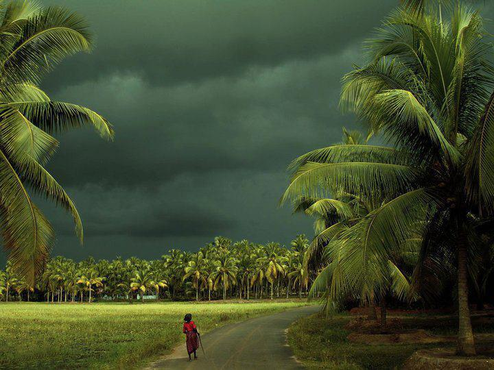 kerala wallpapers for desktop wallpapersafaridownload and share desktop wallpapers kerala pics and images on 720x540