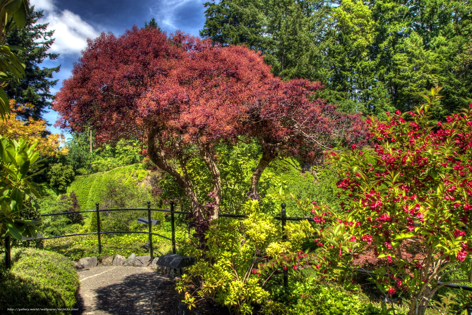 wallpaper Gardens butchart victoria Canada desktop wallpaper 1600x1067