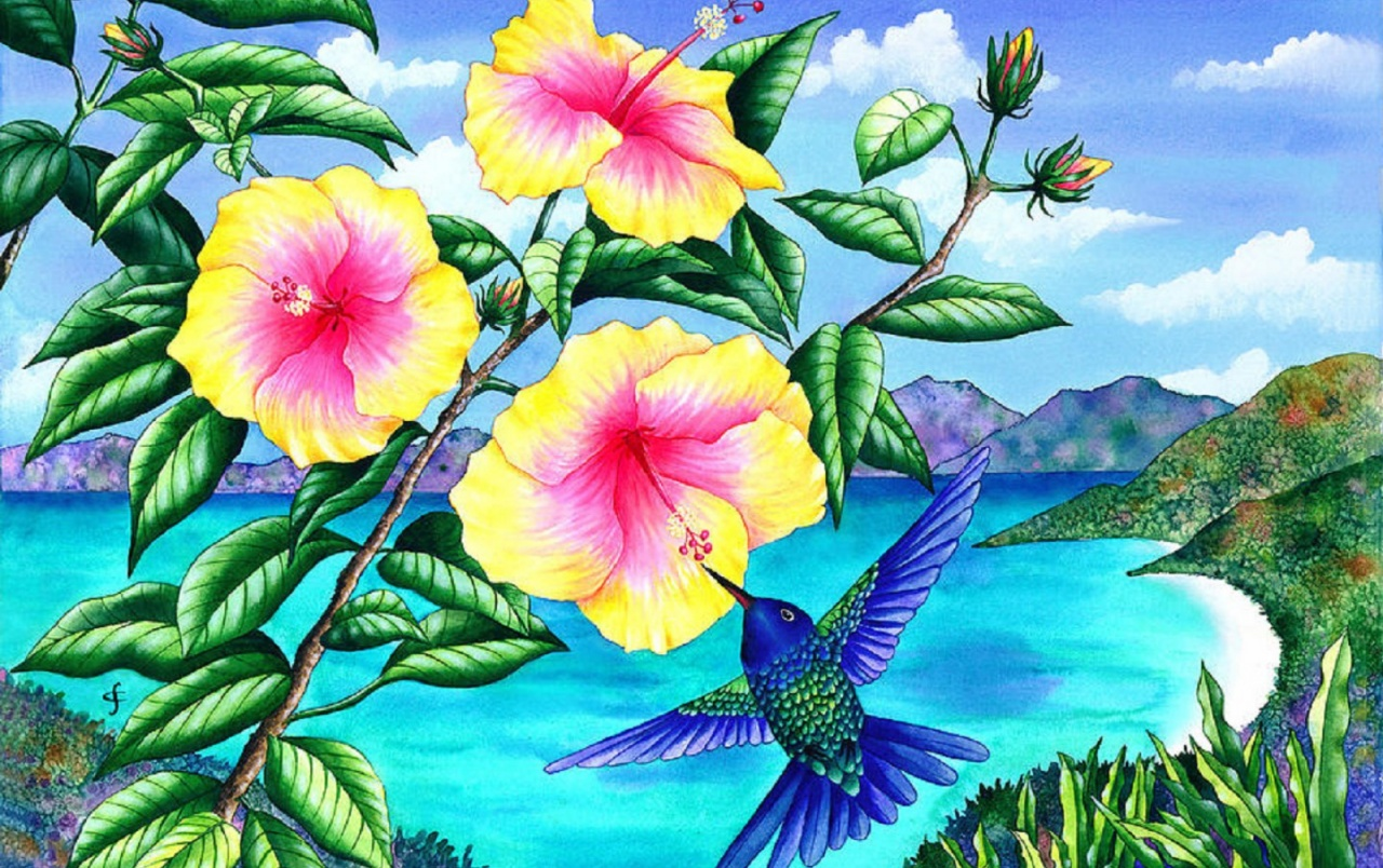 Hummingbirds Yellow Hibiscus wallpapers Hummingbirds Yellow 1280x804