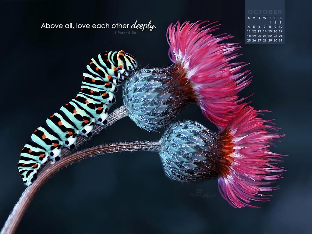 October 2015   Love Deeply Desktop Calendar  Monthly Calendars 1024x768