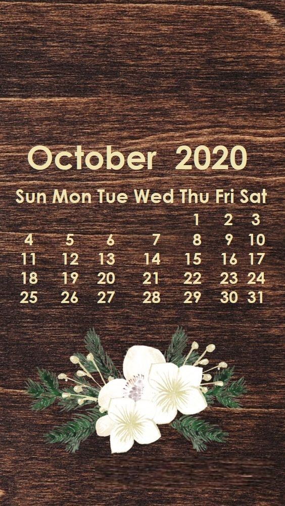 October 2020 iPhone Wallpaper in 2019 Calendar wallpaper 564x1002
