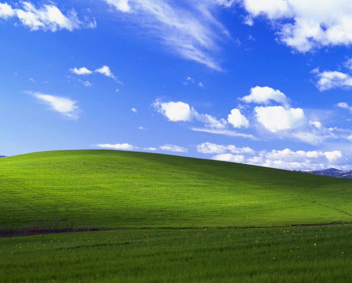 The Story behind the Famous Windows XP Desktop Background   Artsy 1200x965