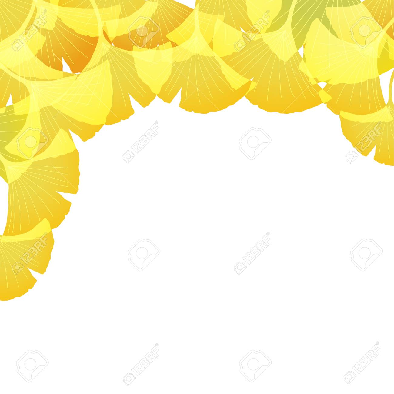 Ginkgo Background Royalty Cliparts Vectors And Stock 1300x1300