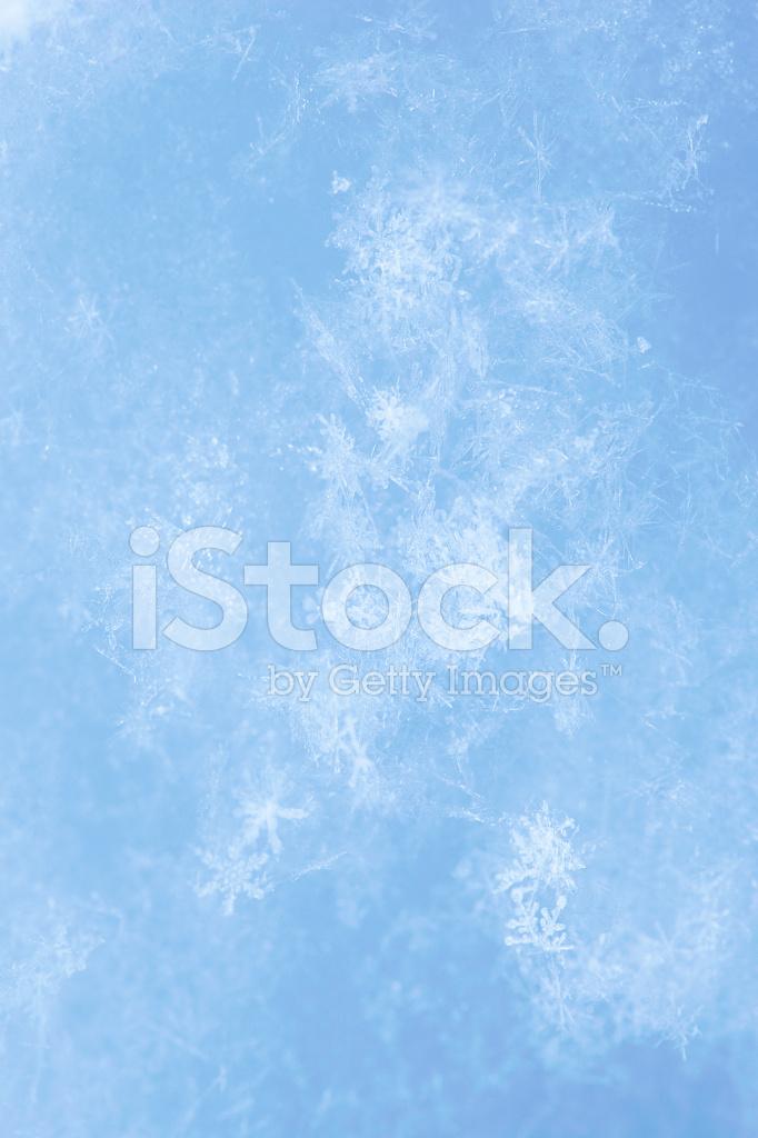 Textura DE Nieve Fresca Fondo Invierno Copo DE Nieve Fotografas 682x1024