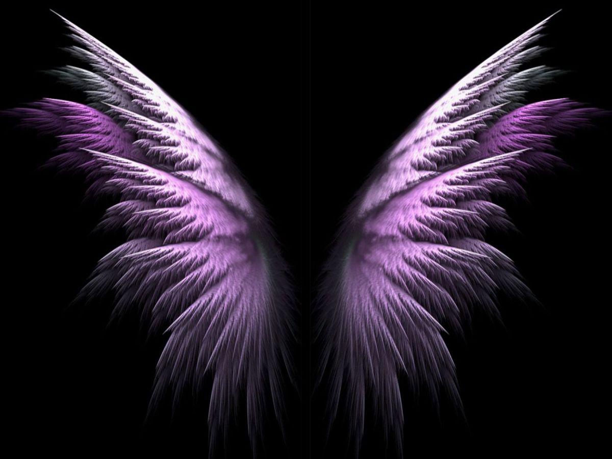 Purple Angel Wings wallpaper   ForWallpapercom 1200x900