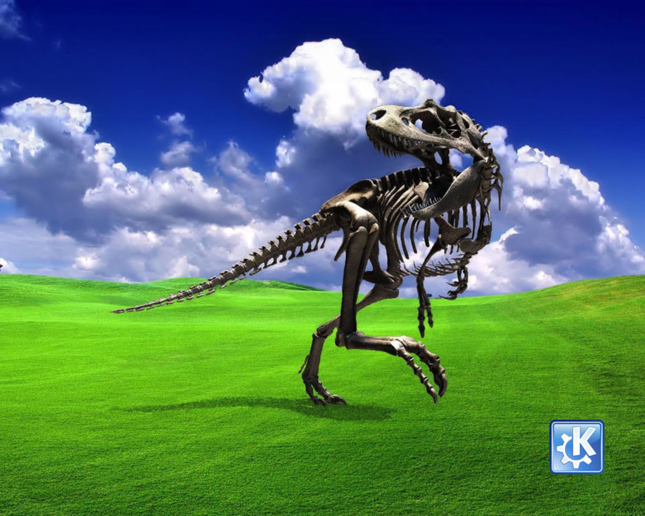 Cool And Funny Microsoft Windows Wallpapers   you dont know the 1280x1024