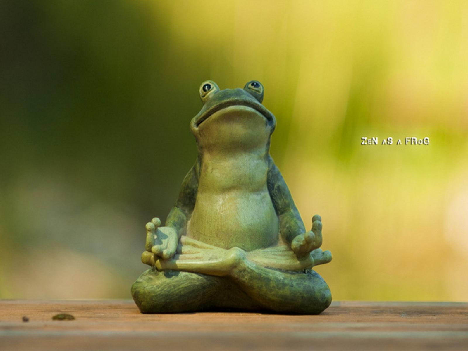 Wallpaper Wednesday Zen As A Frog Zenplicity Wallpaper 1600x1200