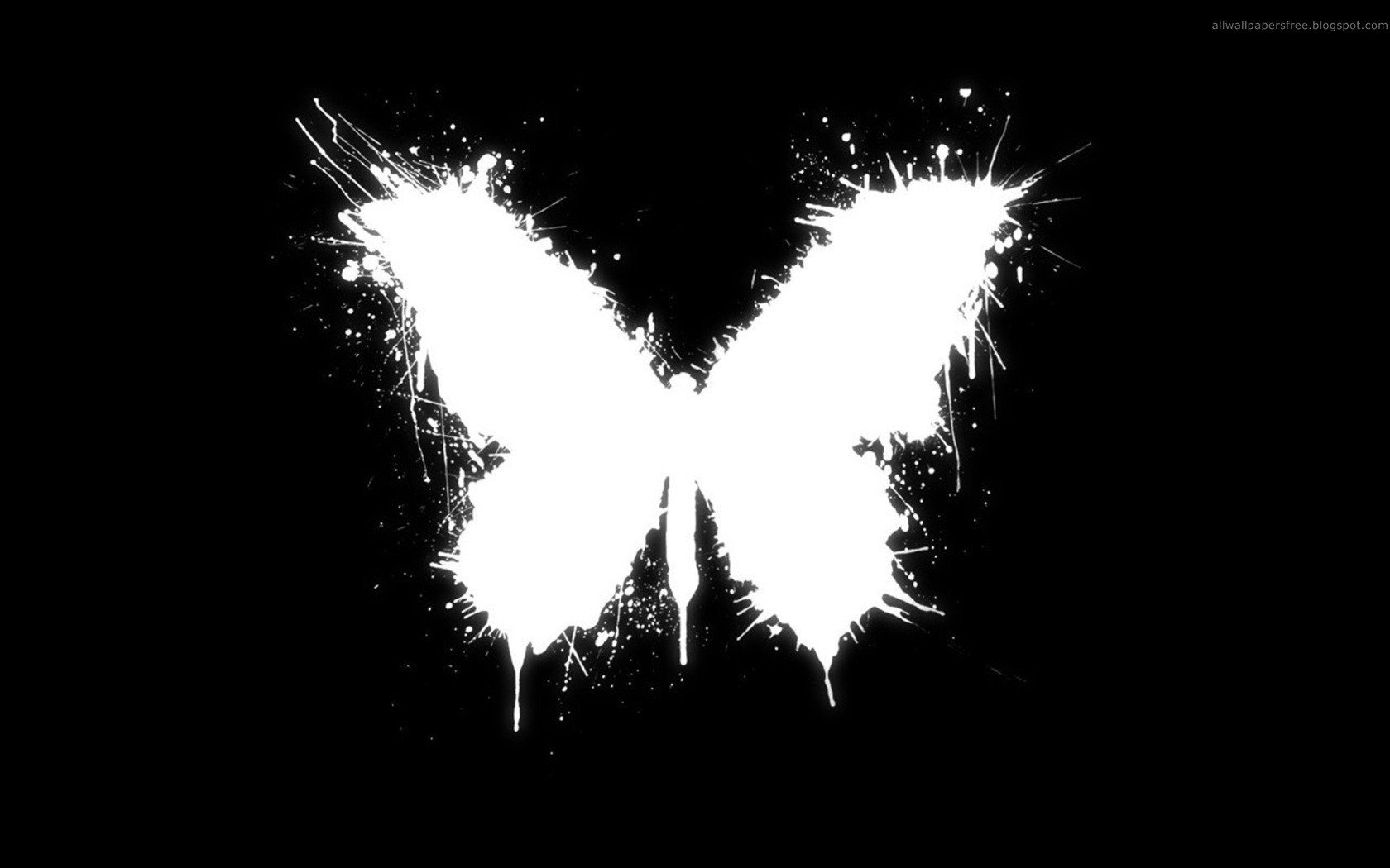 4 The Butterfly Effect HD Wallpapers Background Images 1680x1050