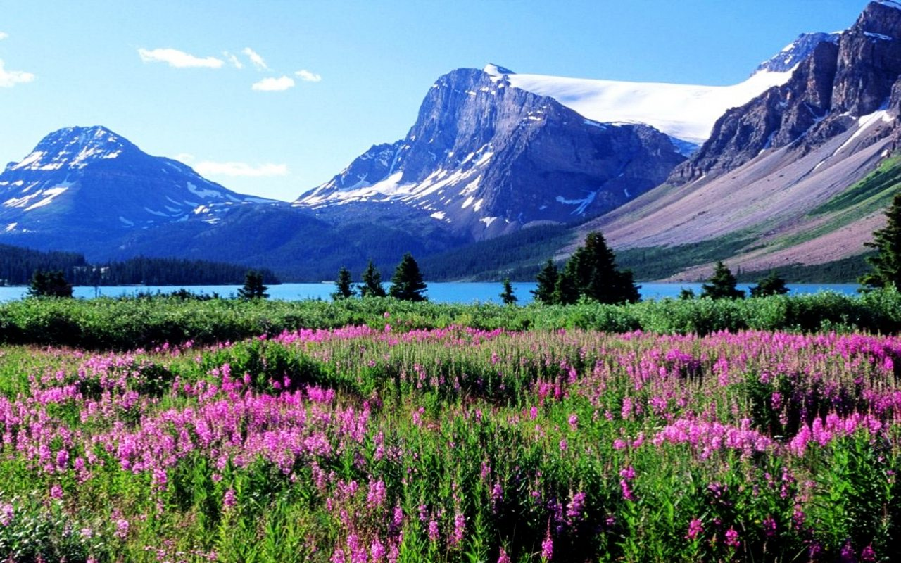 Canada Nature Pictures   Wallpapers HD Fine 1280x800