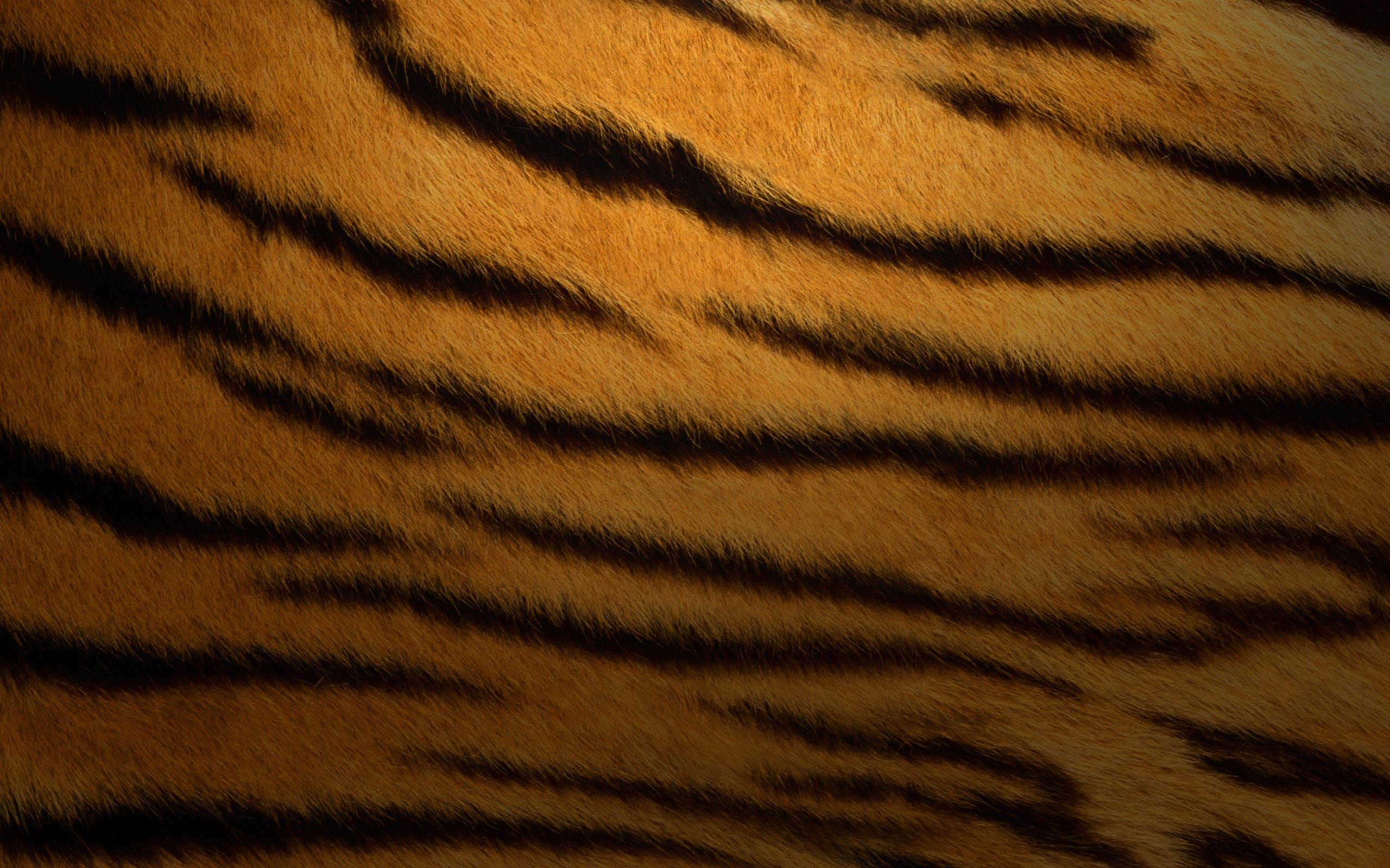 Mac OS Tiger wallpapers Mac OS Tiger stock photos 2560x1600