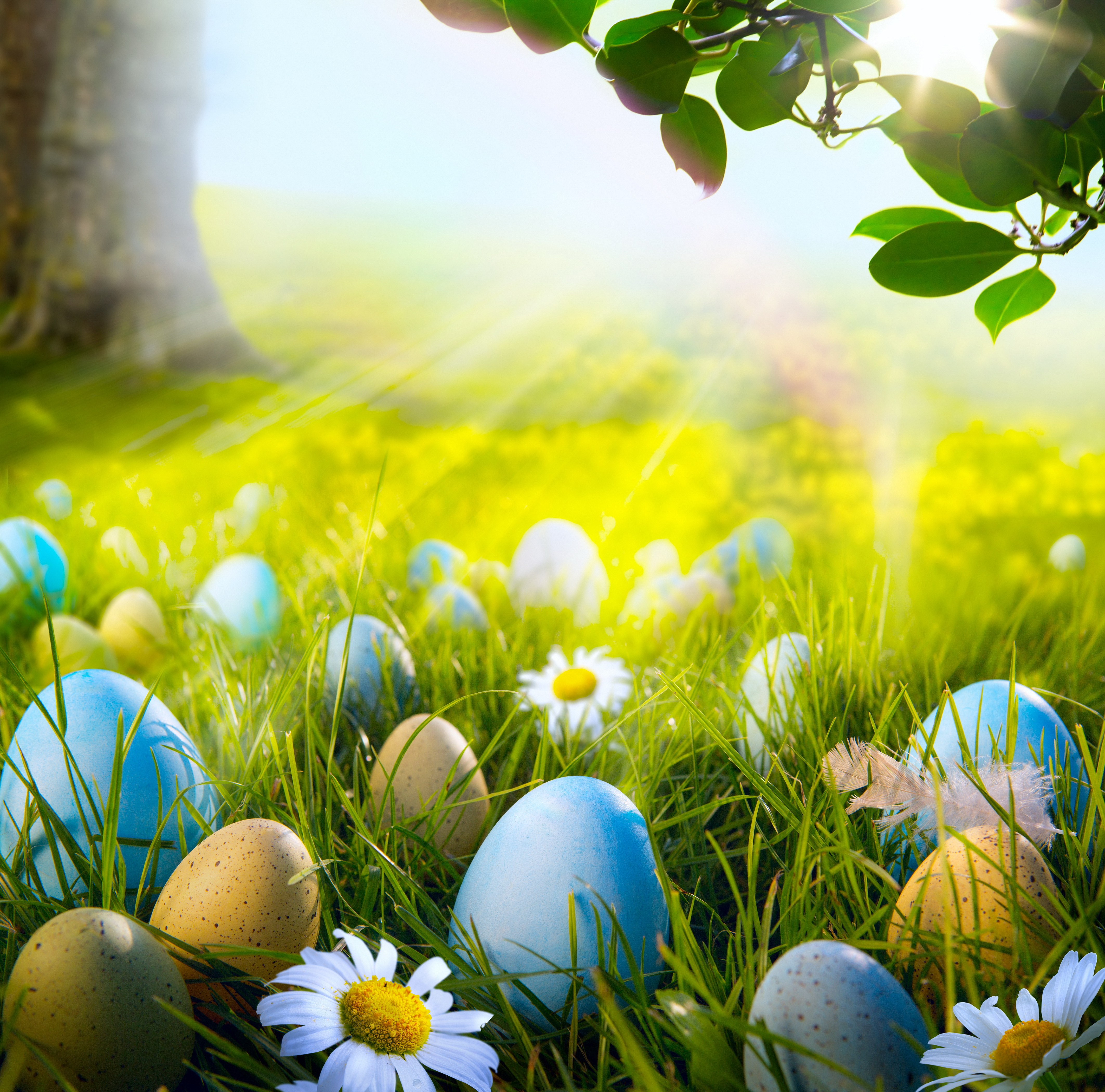Download Free Wallpaper: Free Easter And Spring Wallpaper