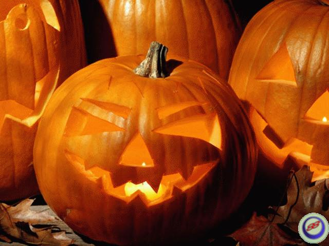 3D ScreenSaver Download2B Halloween Holiday Screensaverpng 640x480