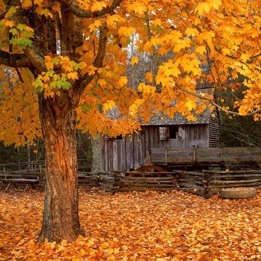 Fall Wallpaper Images Free: Fall Christian Wallpaper And Screensavers