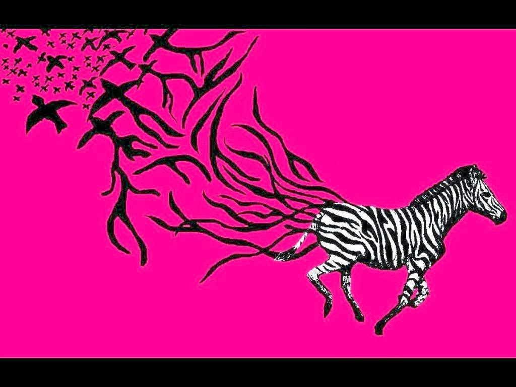 48+] Pink Zebra Wallpaper on WallpaperSafari