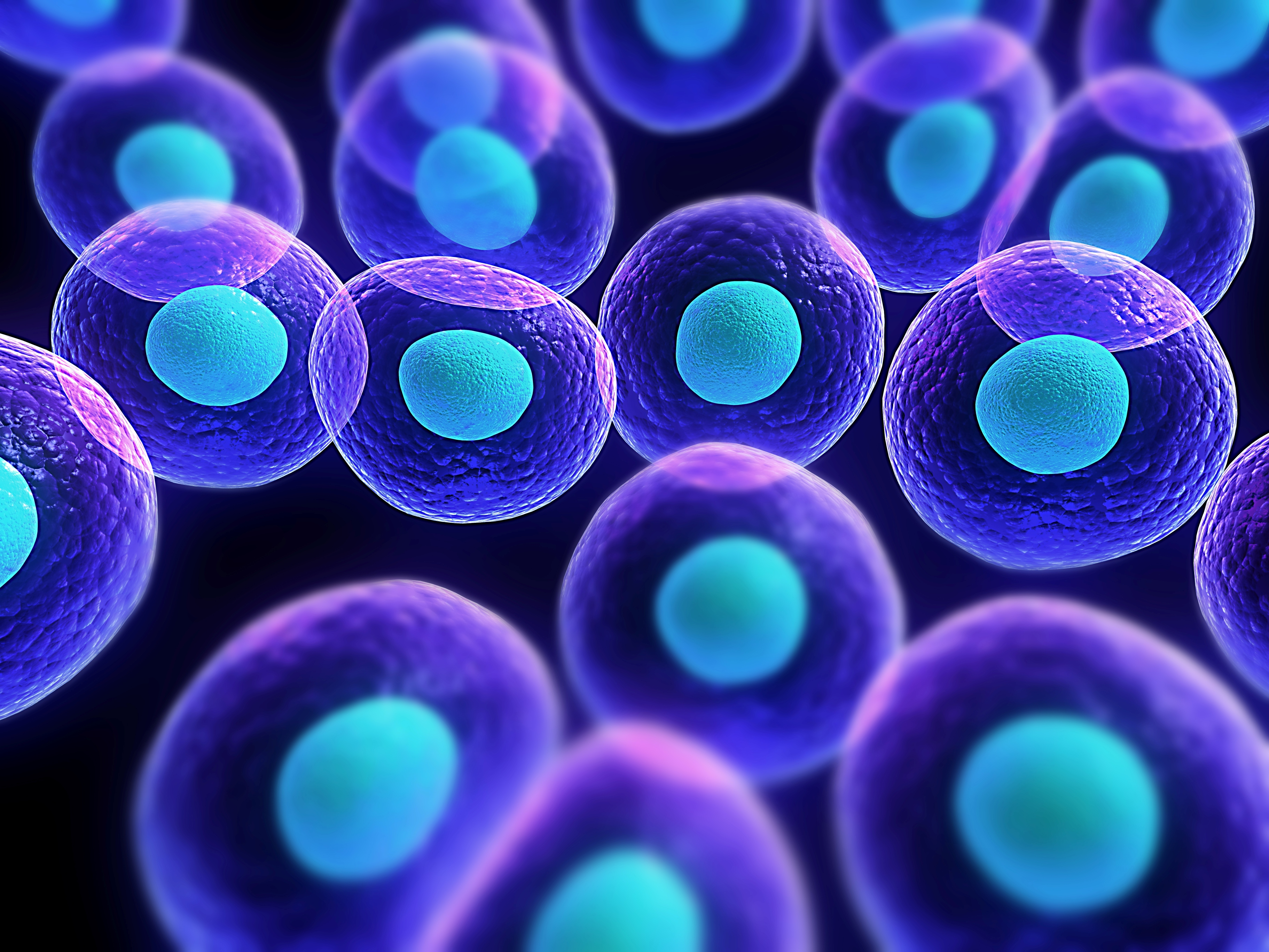 48] Cell Biology Wallpaper on WallpaperSafari 3645x2734