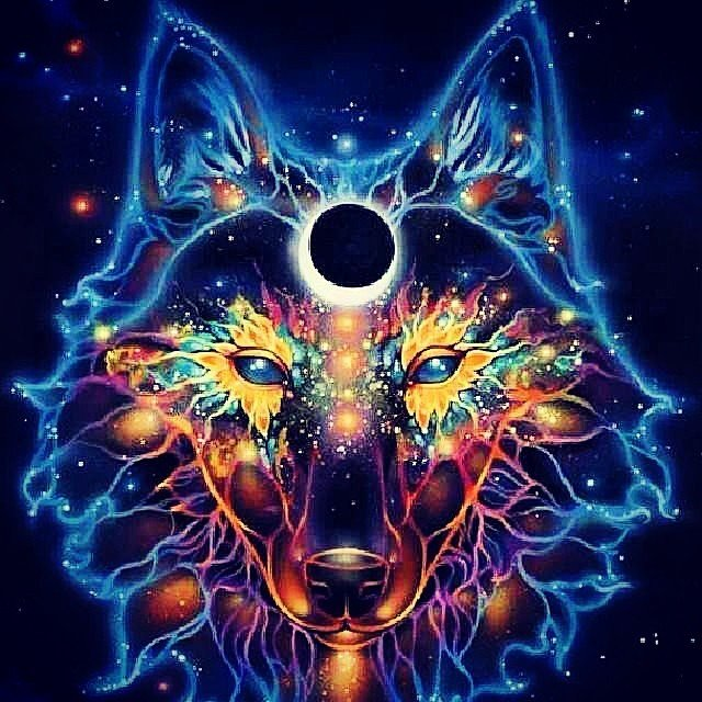 Trippy Wolf Related Keywords Suggestions   Trippy Wolf Long Tail 640x640