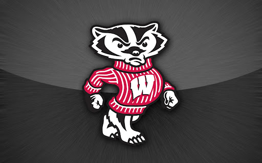 Wisconsin Badgers HD Wallpaper   Android Informer If youre a true 512x320