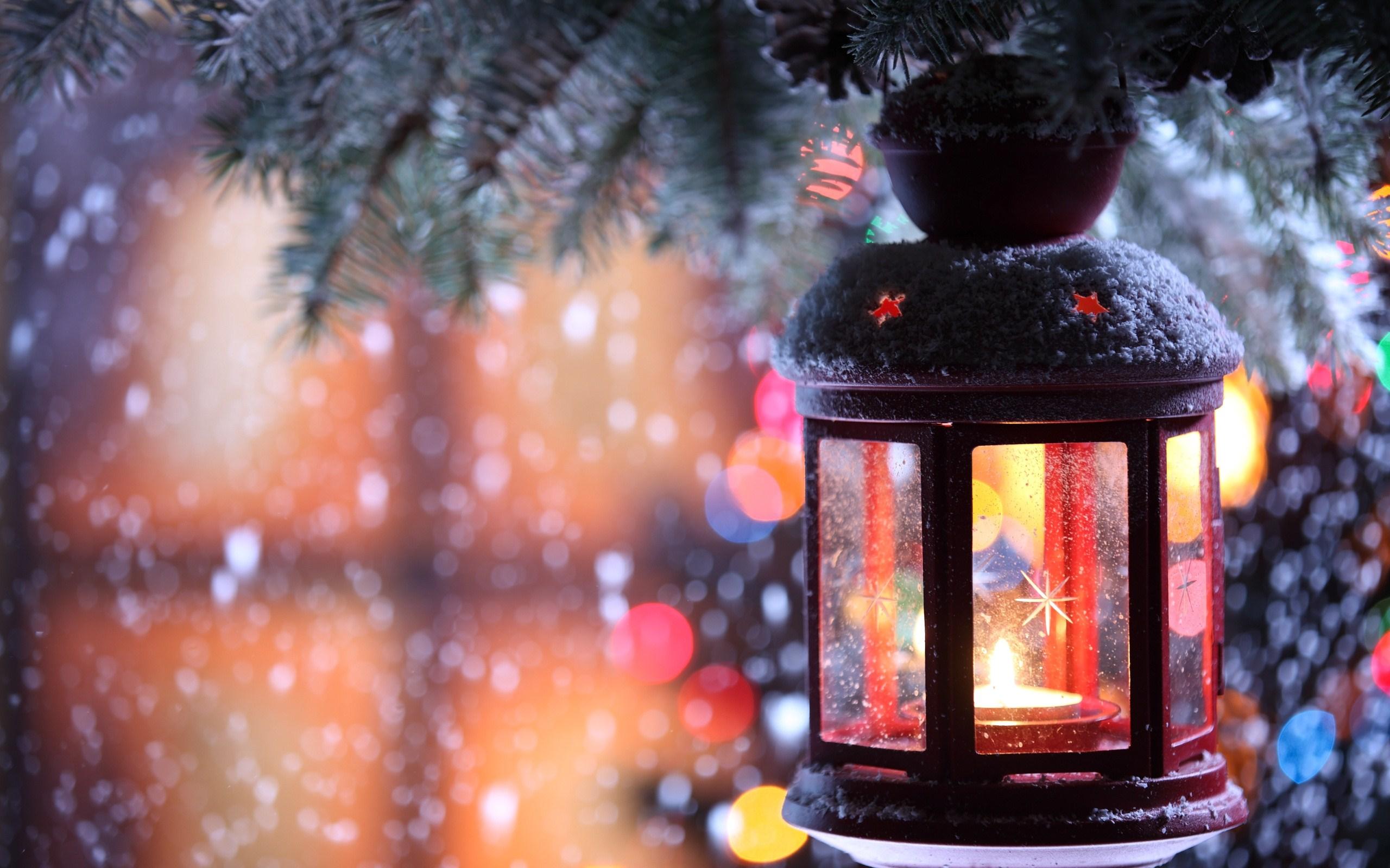 fir tree branch snow winter snowflakes christmas photo wallpaper 2560x1600