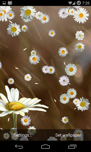 View bigger   Cute Daisy Live Wallpaper HD for Android screenshot 307x512