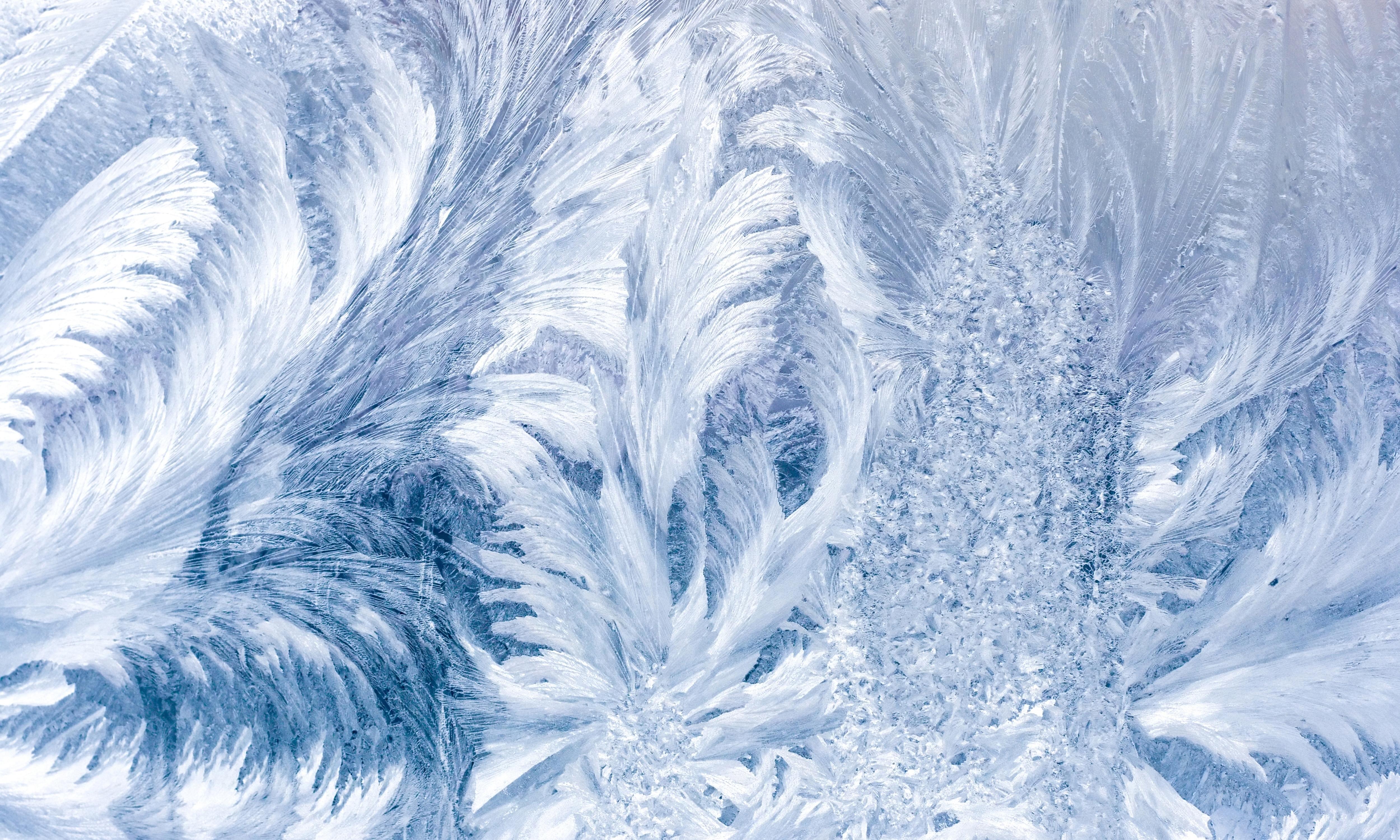 Pattern frost glass frost winter wallpaper   ForWallpapercom 5000x3000
