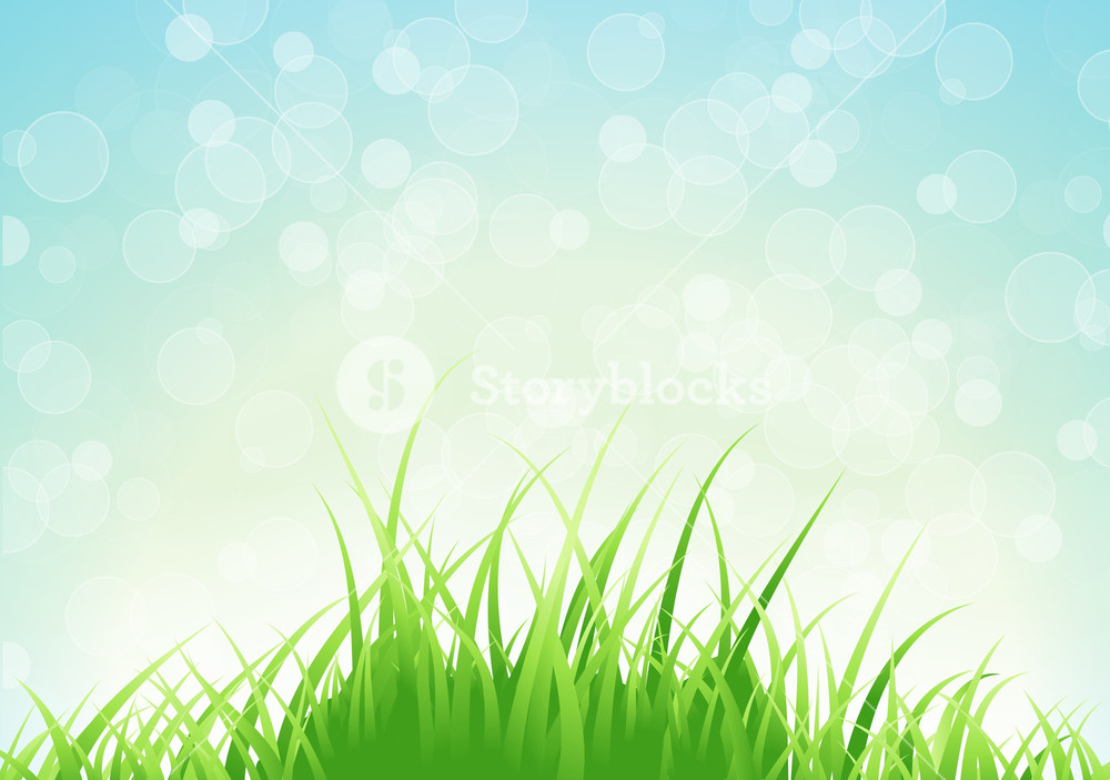 Spring Background Vector Illustration Royalty  Stock Image 1000x703