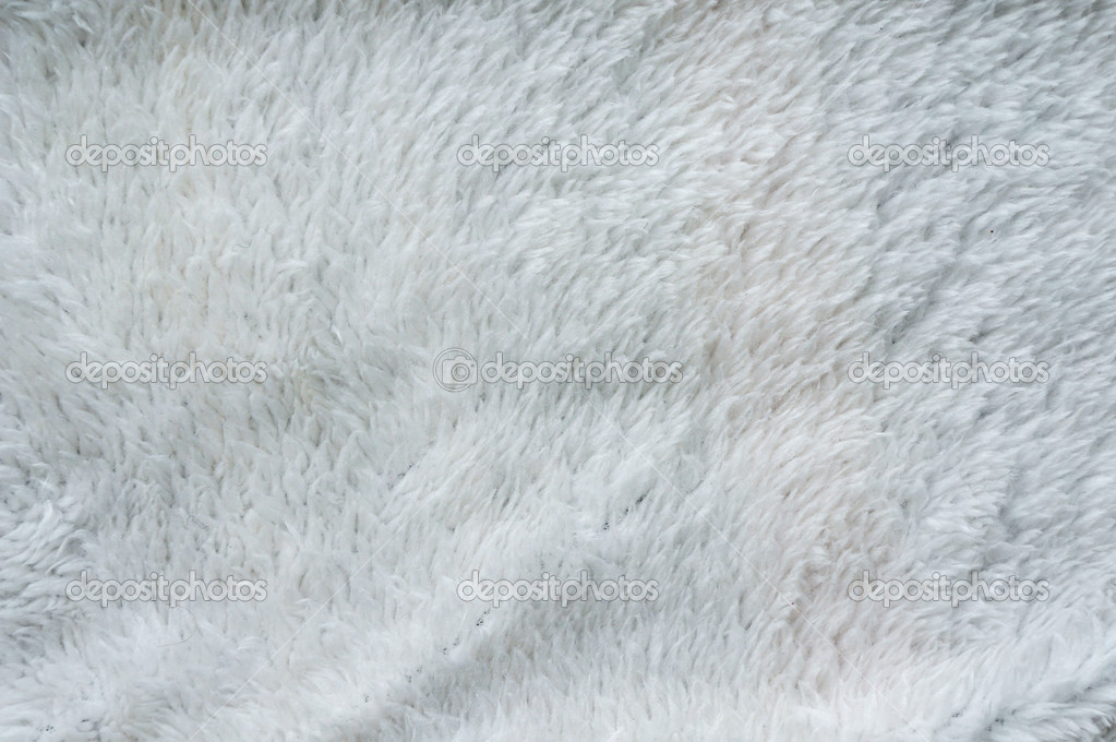 White Fur Background White Fur Background 1023x680