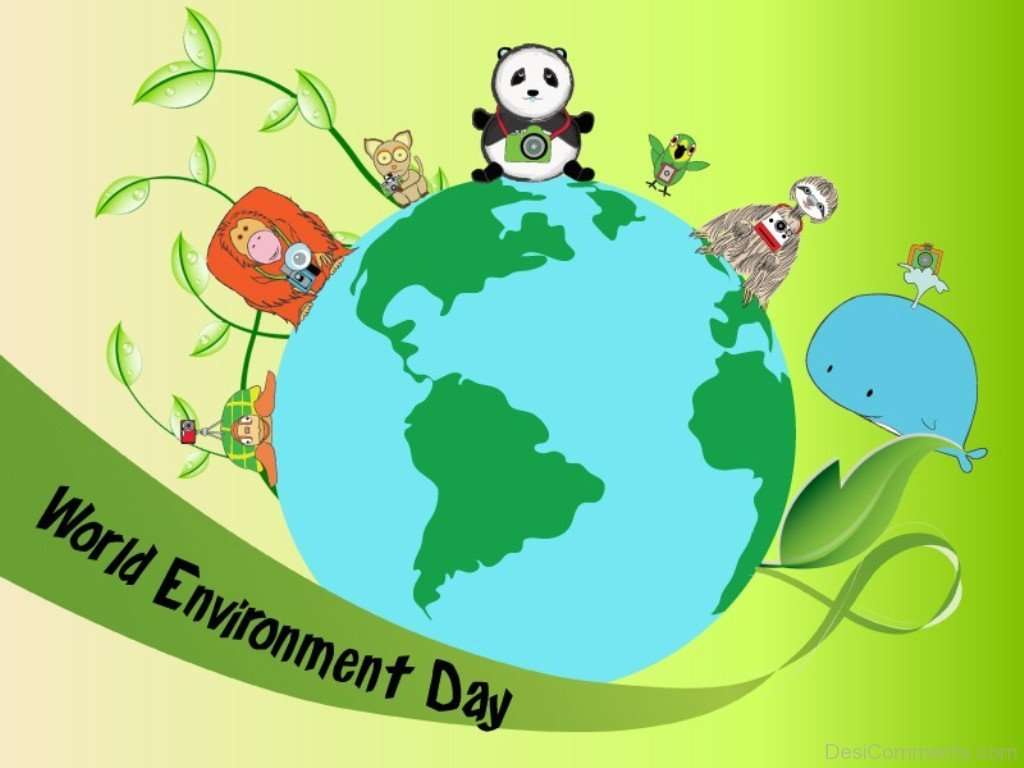 World Environment Day Pictures Images Graphics   Page 2 1024x768