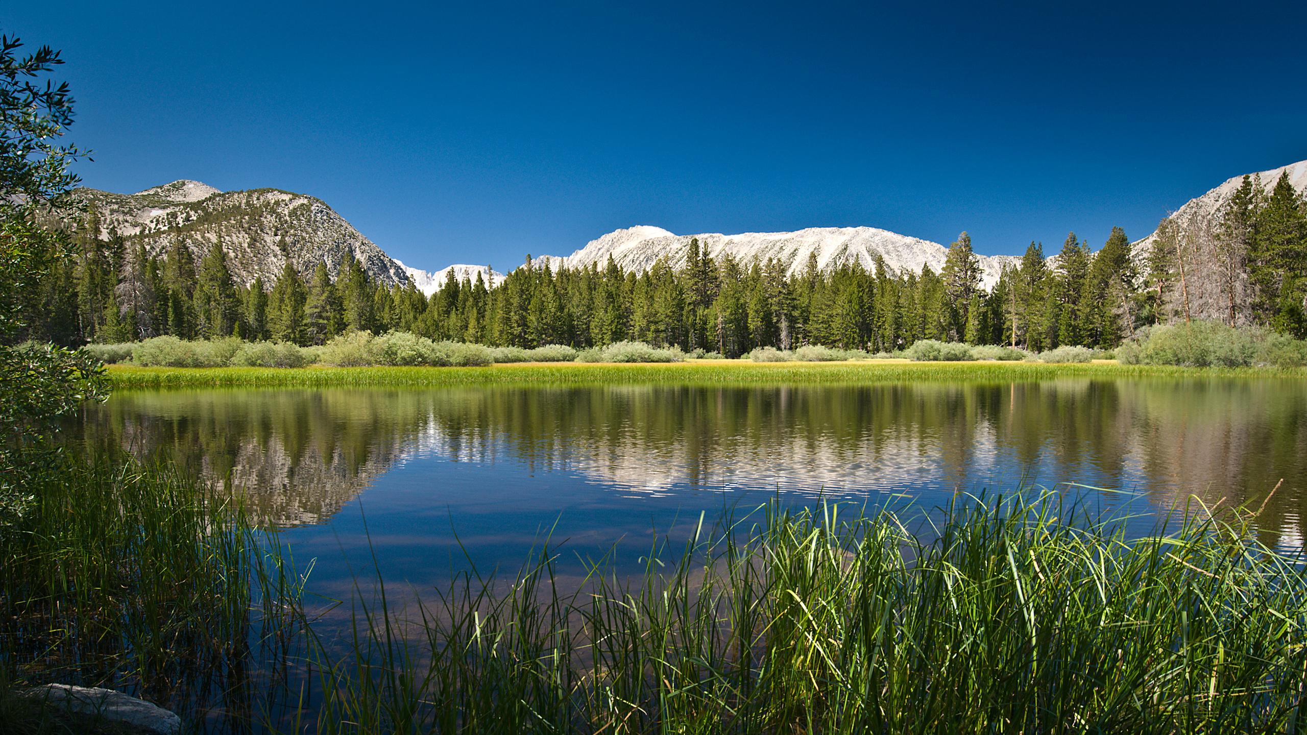 high resolution nature wallpaper 2560x1440 2560x1440