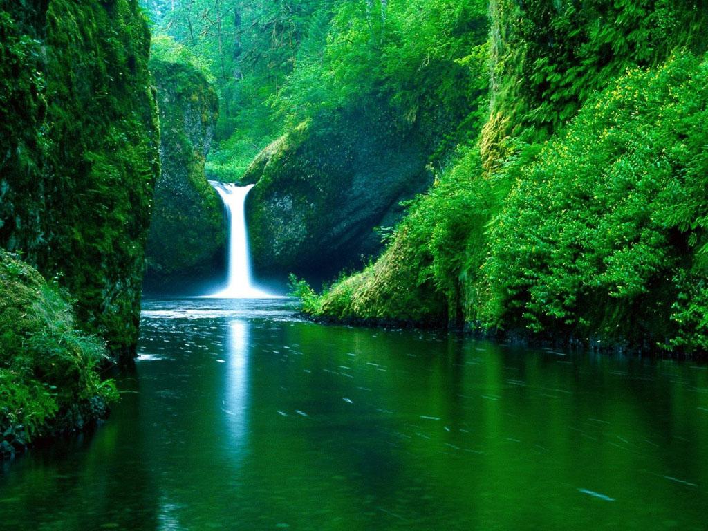 wallpaper Beauty Of Nature Desktop Wallpapers 1024x768