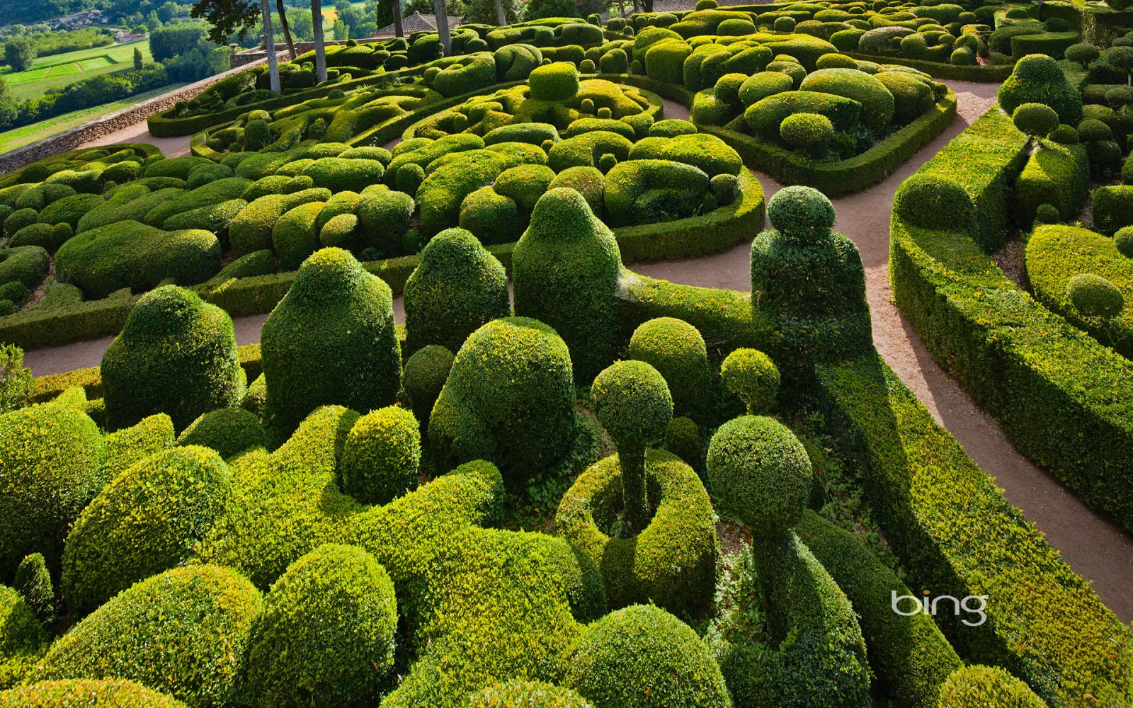 Sculpted boxwoods at the Chateau de Marqueyssac in Vzac France 1600x1000