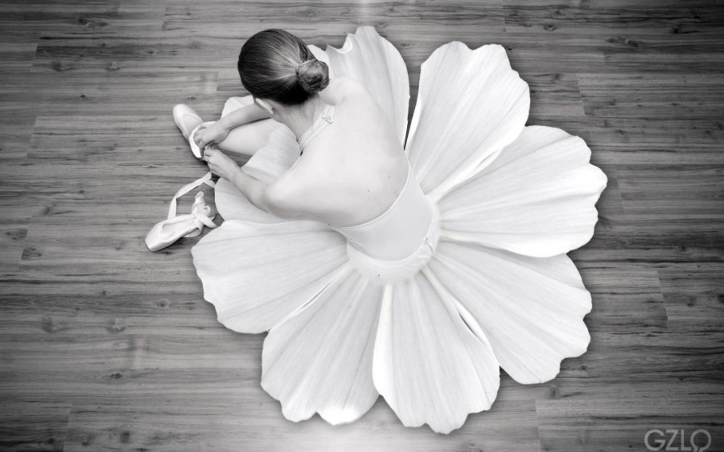 Ballet Wallpaper 1440x900 Flowers Ballet Monochrome Dancers Ballet 1440x900