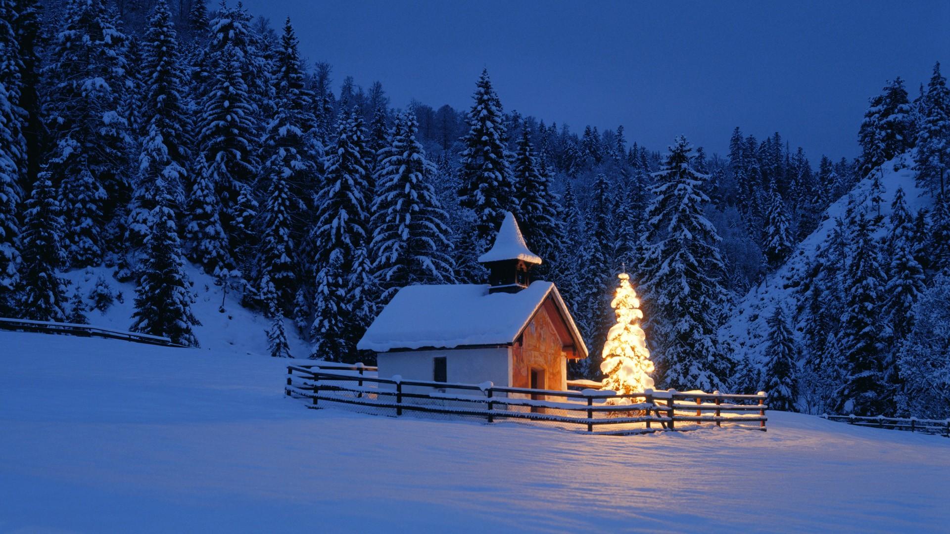 Germany Christmas Wallpaper 1920x1080 Germany Christmas Trees 1920x1080