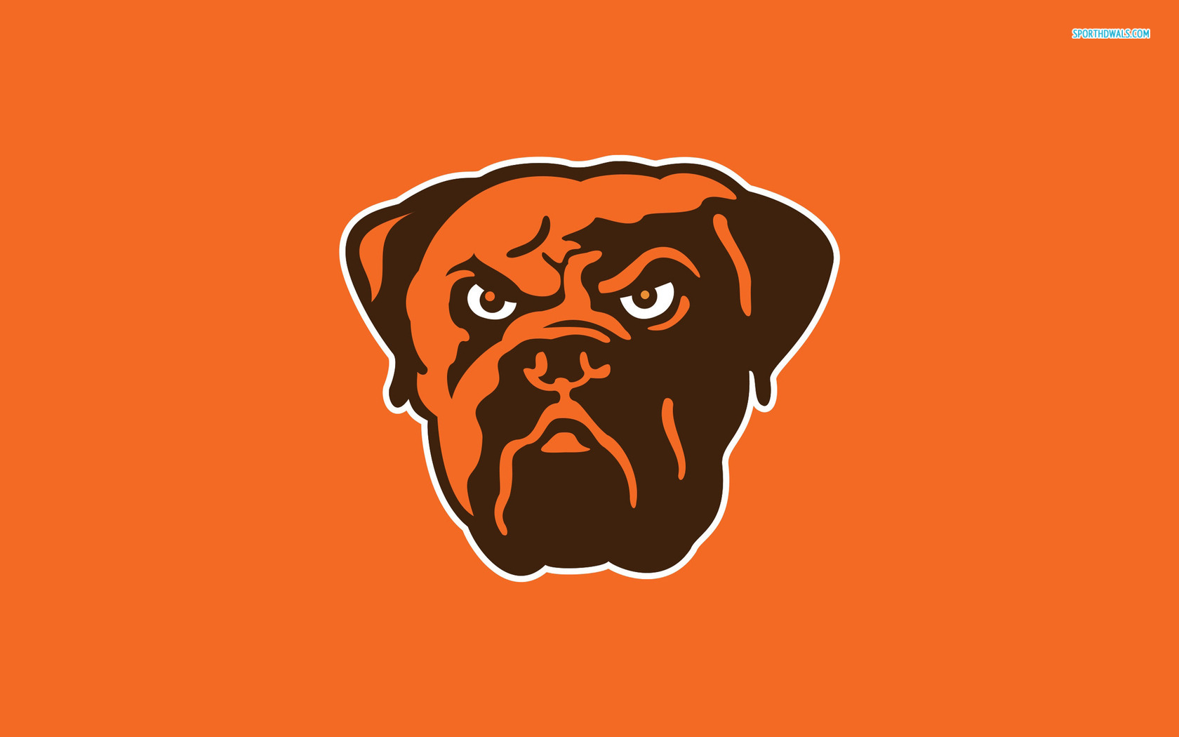 Cleveland Browns   Bulldog Mascot Wallpaper for Phones and Tablets 1680x1050