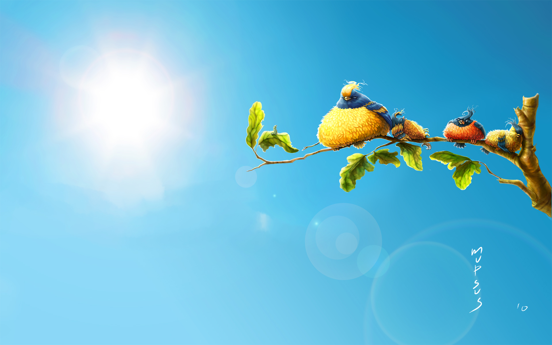 Sun Birds Wallpapers HD Wallpapers 1920x1200