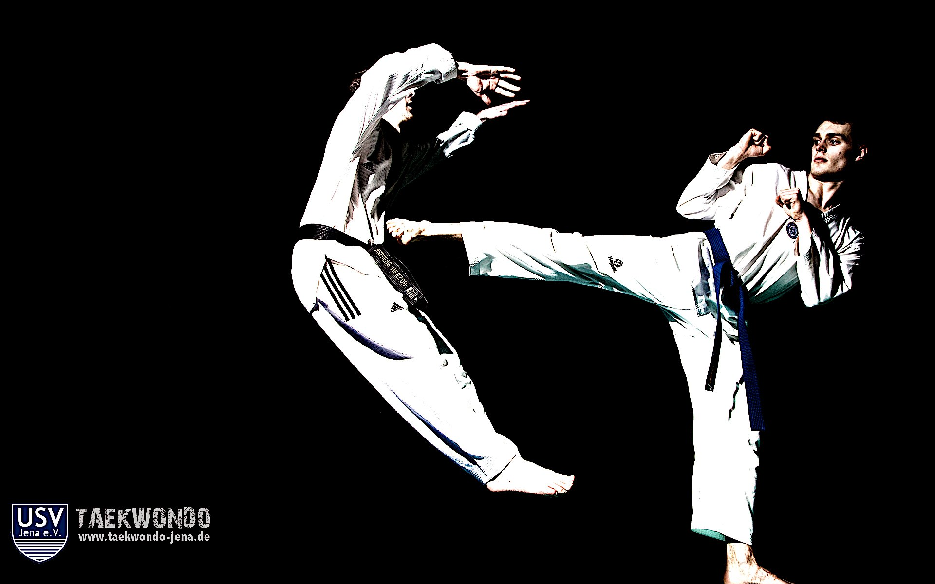 The gallery for   gt Tkd Wallpaper 1920x1200