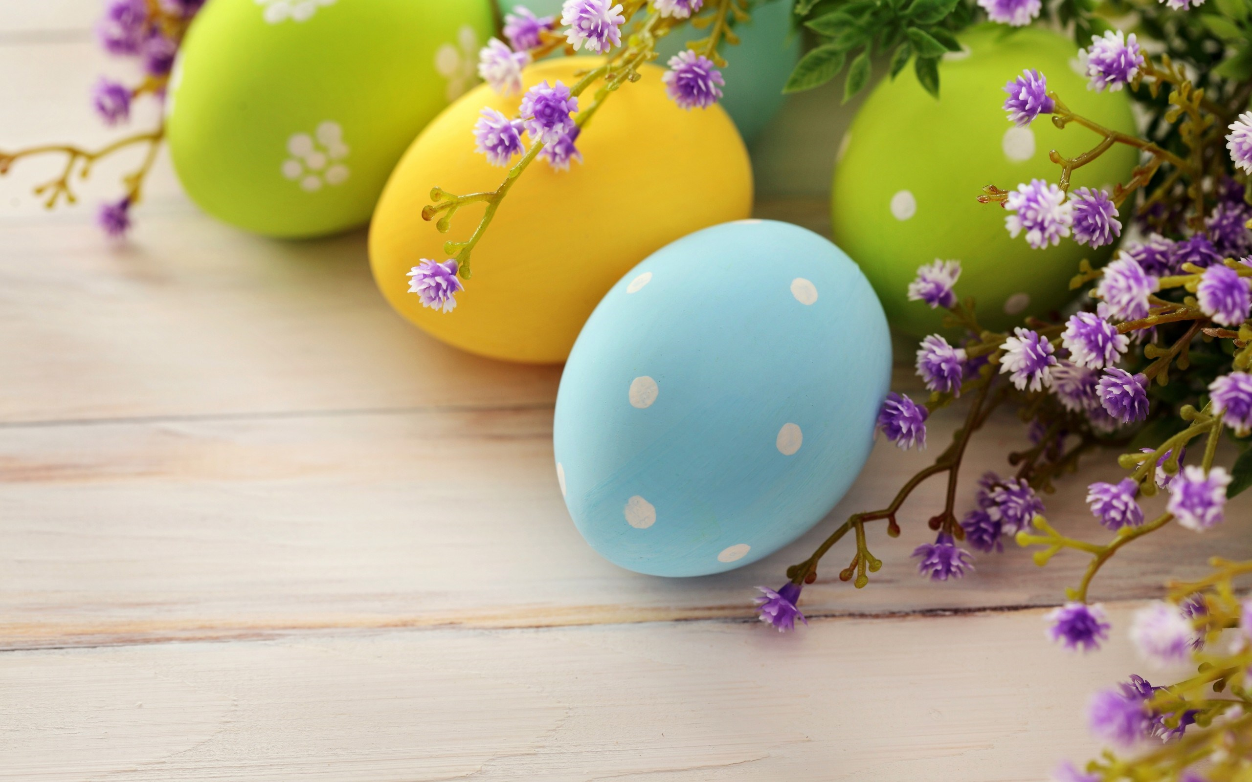 colors easter eggs dots holiday flower wooden hd wallpaper 2560x1600