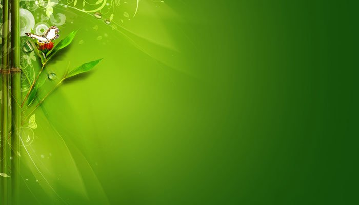 Green Morning Twitter Background 700x400