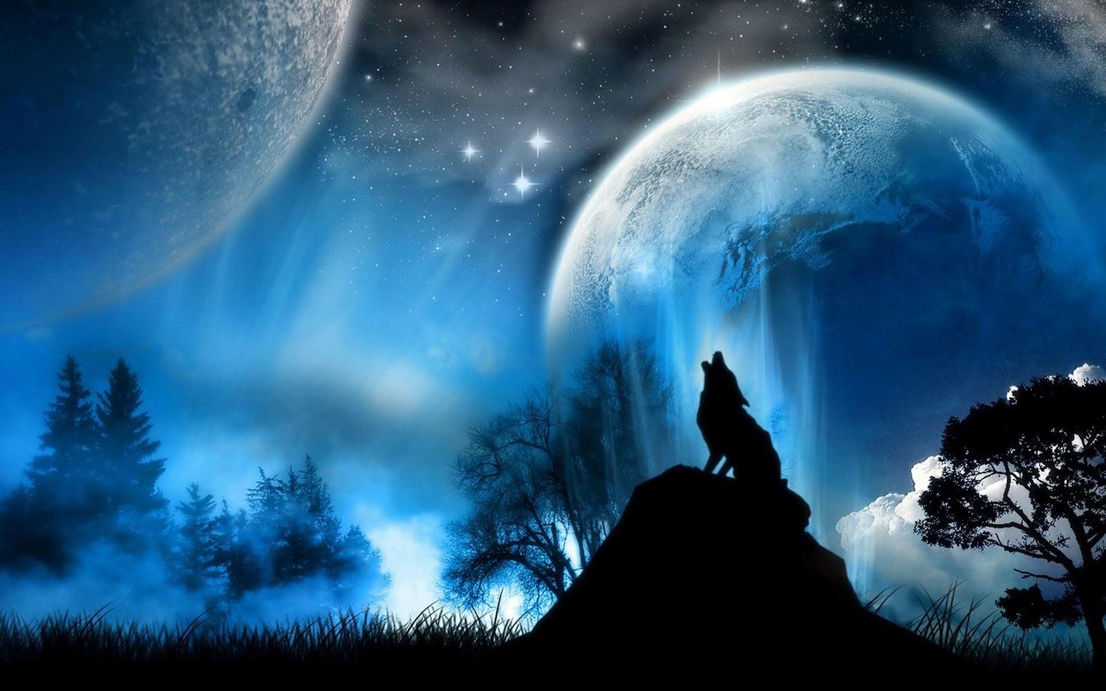 Huilende wolf fantasie dieren wallpaper blauw zwart 1600x1000