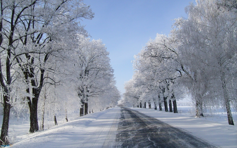 wallpaperwiki Winter snow background wallpaper retina hd download 2880x1800